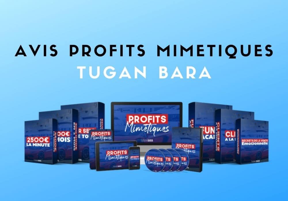 avis sur Profits Mimétiques